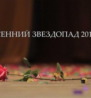 Осенний звездопад 2012 (Курск)